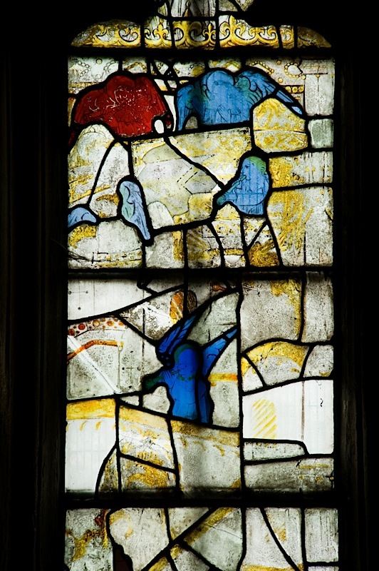 East window of Savile Chapel, nII, Panel 3e, c1493,Church of St. Michael and All Angels, Thornhill, Wakefield.Commissioned by Anna Eavis with Jonathan and Ruth Cooke Ltd (Stained Glass Conservation).